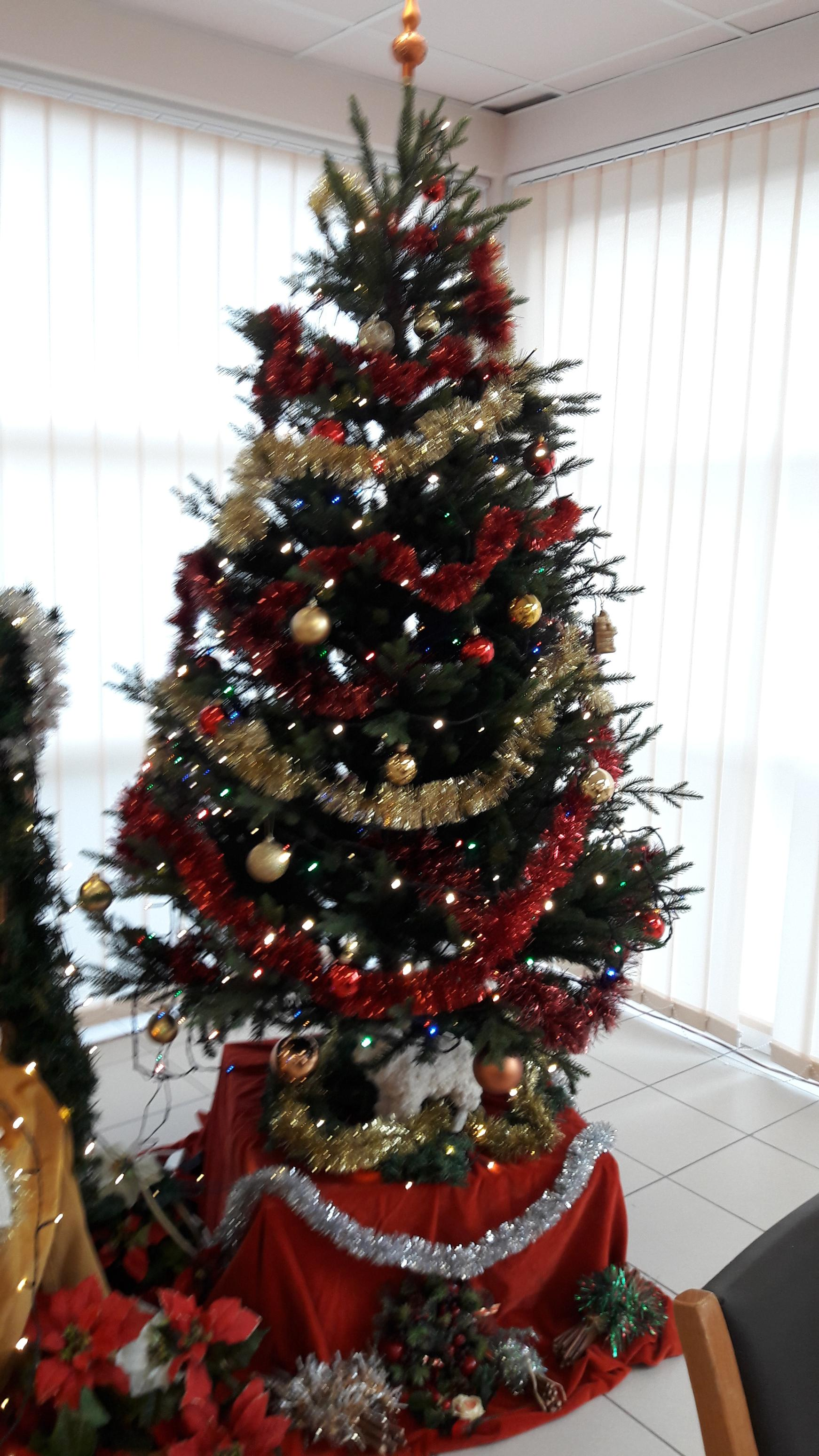 Marché de Noël (18/12/18)